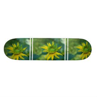 Budding False Sunflower Skateboard