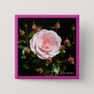Budding Pink Rose Buds 2 Inch Square Button