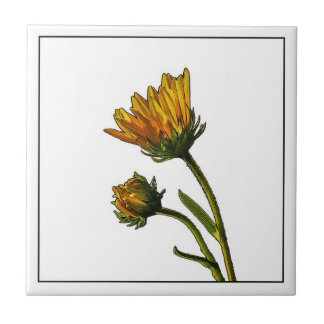 Budding Sunflowers Photo Ceramic Tile