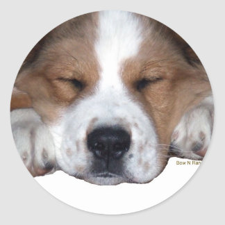Buddy Sleepy Dog Classic Round Sticker
