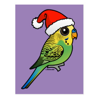 Budgerigar Santa Claus Postcard