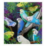 Budgerigars in Ferns Poster