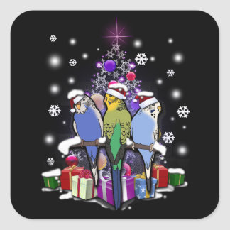 Budgerigars with Christmas Gift and Snowflakes Square Sticker