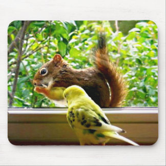 Budgie and Red Squirrel Mouse Pad