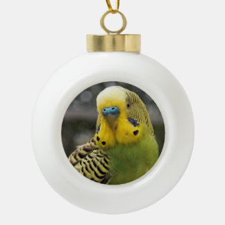 Budgie Bird Ceramic Ball Ornament