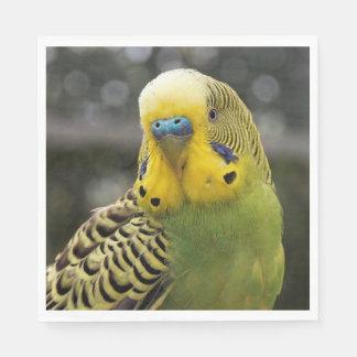 Budgie Bird Disposable Napkins