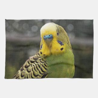 Budgie Bird Kitchen Towels