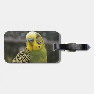 Budgie Bird Luggage Tag
