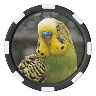 Budgie Bird Poker Chips