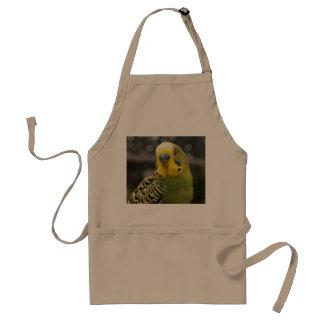 Budgie Bird Standard Apron