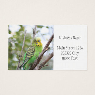 budgie business card
