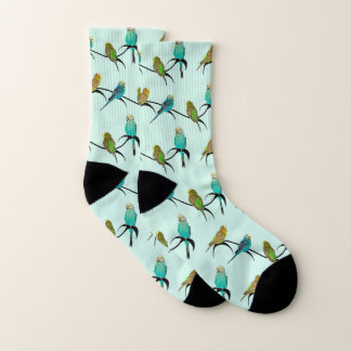 Budgie Frenzy Socks (Cyan)