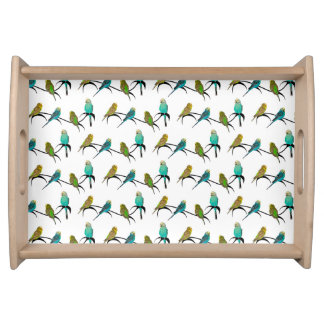Budgie Frenzy Tray (choose colour)
