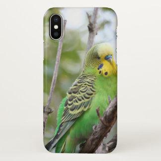 budgie iPhone x case
