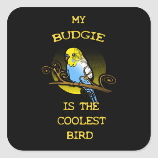 Budgie is the Coolest Bird Square Sticker