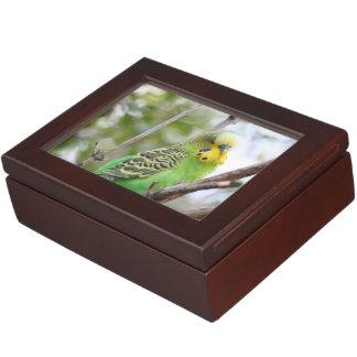 budgie keepsake box