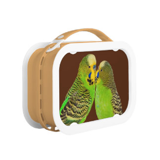 Budgie Kisses Lunch Box