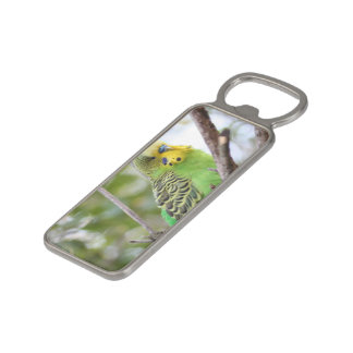 budgie magnetic bottle opener