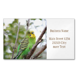 budgie Magnetic business card