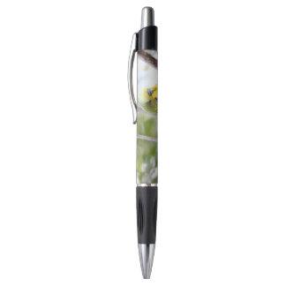 budgie pen