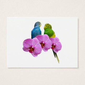 Budgie with Purple Orchid Business Card