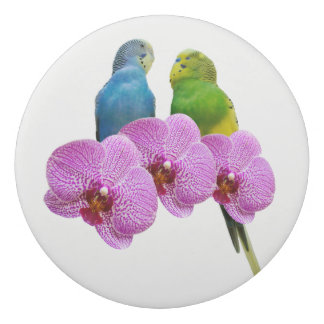 Budgie with Purple Orchid Eraser