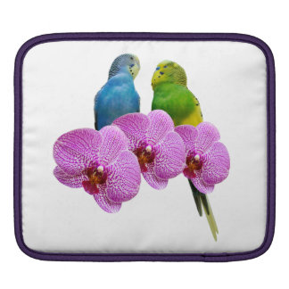 Budgie with Purple Orchid iPad Sleeve