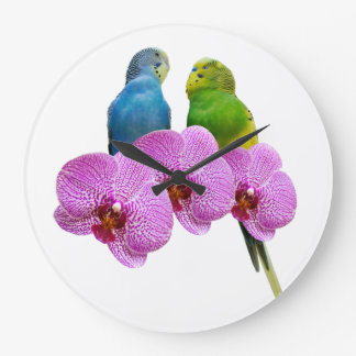 Budgie with Purple Orchid Large Clock