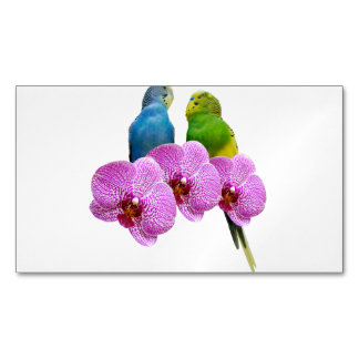 Budgie with Purple Orchid Magnetic Business Card