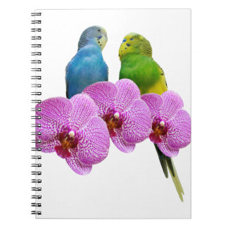 Budgie with Purple Orchid Notebooks