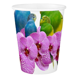 Budgie with Purple Orchid Paper Cup