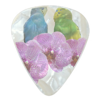 Budgie with Purple Orchid Pearl Celluloid Guitar Pick