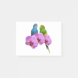 Budgie with Purple Orchid Post-it Notes