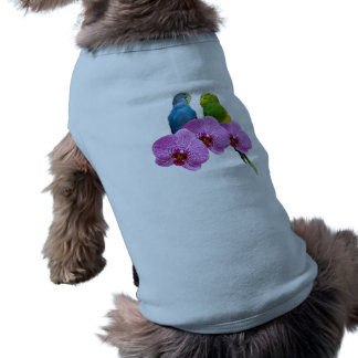 Budgie with Purple Orchid Shirt