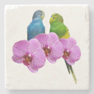Budgie with Purple Orchid Stone Coaster