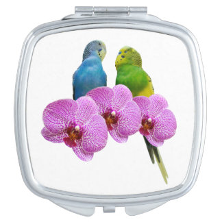 Budgie with Purple Orchid Vanity Mirrors