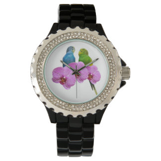 Budgie with Purple Orchid Watch