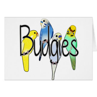Budgies Card