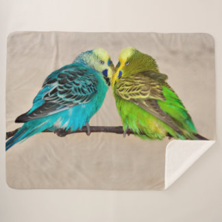 Budgies in Love Sherpa Blanket