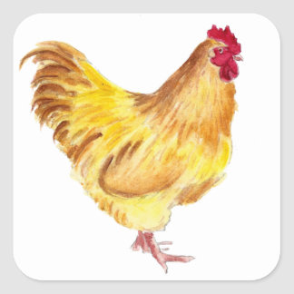 buff orpington rooster painting on items sticker