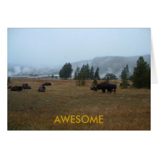 Buffalo Awesome Greeting Card