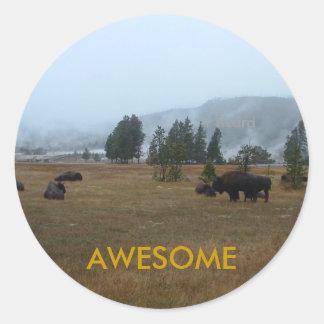 Buffalo Awesome Sticker