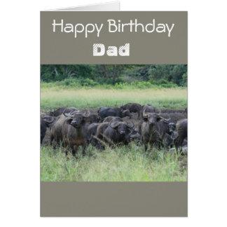 Buffalo Birthday Card For Dad