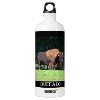 Buffalo (Bison) Kansas, Oklahoma, Wyoming Water Bottle