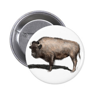 Buffalo, Bubalus 2 Inch Round Button