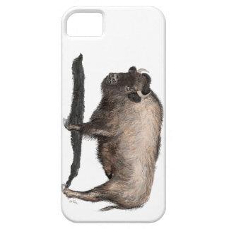 Buffalo, Bubalus iPhone 5 Cases