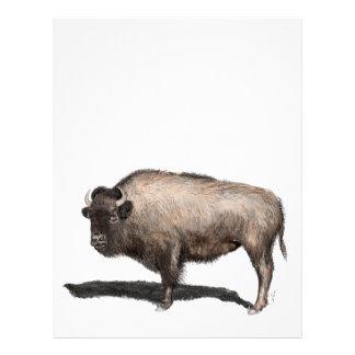 Buffalo, Bubalus Letterhead