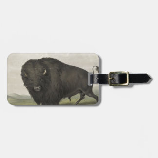 Buffalo Bull Grazing by George Catlin Luggage Tag