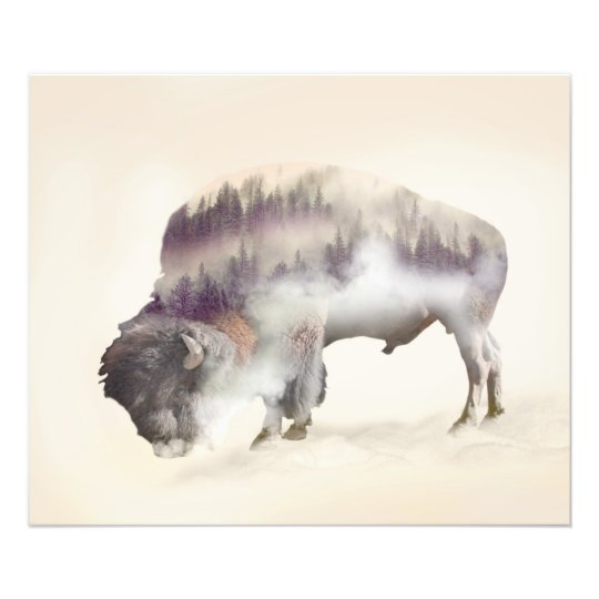 Buffalo-double exposure-american buffalo-landscape photo print
