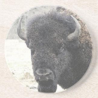 Buffalo Drink Coasters